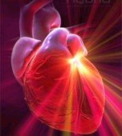 szív agya spirituális lélekgyógyászat