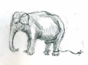 elefánt1
