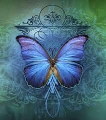 pillangó1